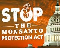 "Monsanto & the biotech industry are working behind closed doors to undermine your basic rights. As Washington discusses the ""fiscal cliff"", biotech lobbyists are desperate to slide provisions in any end of the year omnibus spending bill to make sure their new GMO crops can evade any serious scientific or regulatory review. Join us in putting a stop to the Monsanto Protection Act!"