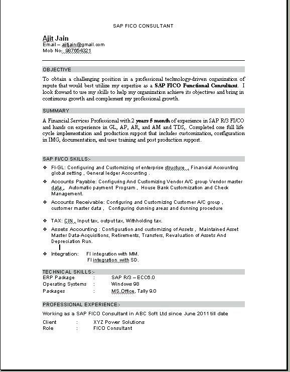 For Tally Erp 9 3 Resume Format Resume Pdf Resume No