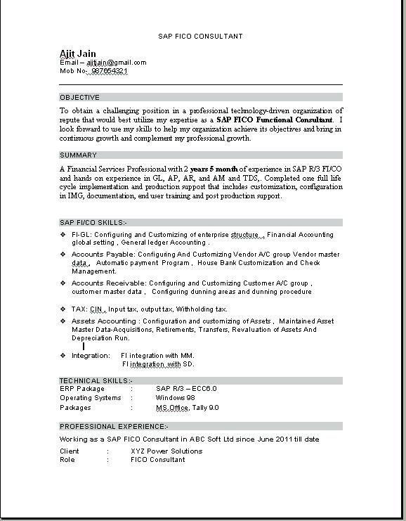 For Tally Erp 9 3-Resume Format Sample resume, Resume, Resume