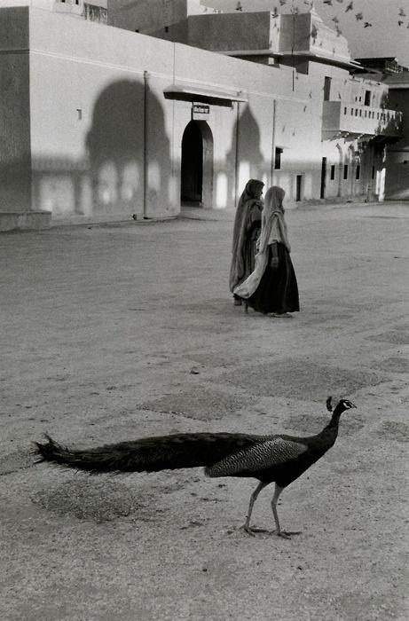 mark riboud jaipur 1956