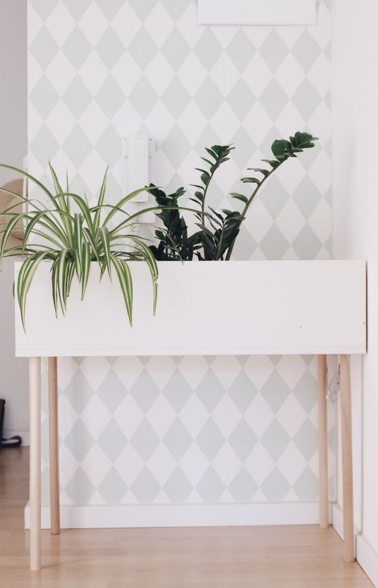In dieser Schritt-für-Schritt-Anleitung zeige ich dir, wie man ganz günstig einen DIY Pflanzenständer selber machen kann.