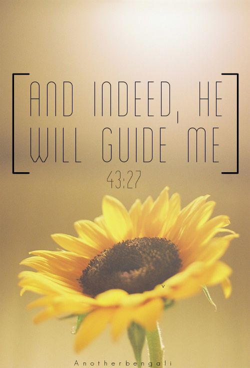 HIS Guidance is what i crave and pray for... Don't let me go astray, O Allah. Let your trials strengthen my imaan!