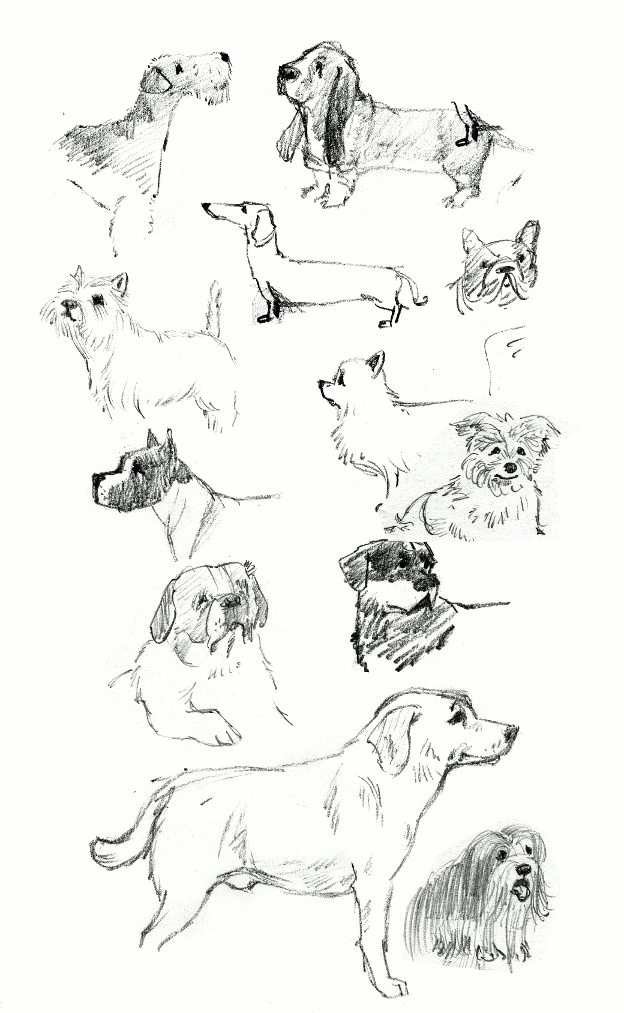 Draw a dog or two...