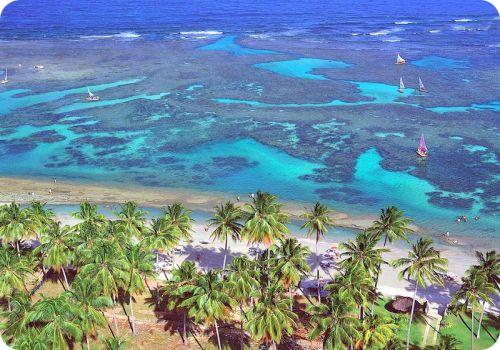 Porto de Galinha-Pernambuco in Brazil Why Wait? Call #C.Fluker #traveldesigner 866-680-3211 www.whywaittravels.com
