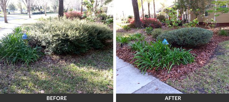 Timberline Outdoor Services Professional Local Lawn Care