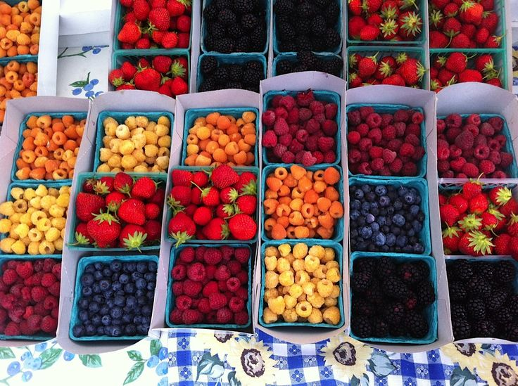 Harry's Berries at the Santa Monica Farmers Market