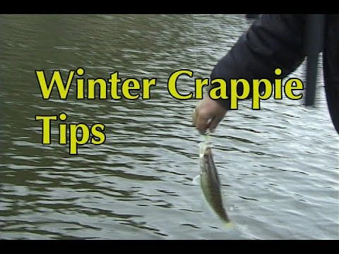 Winter Crappie Tips - YouTube