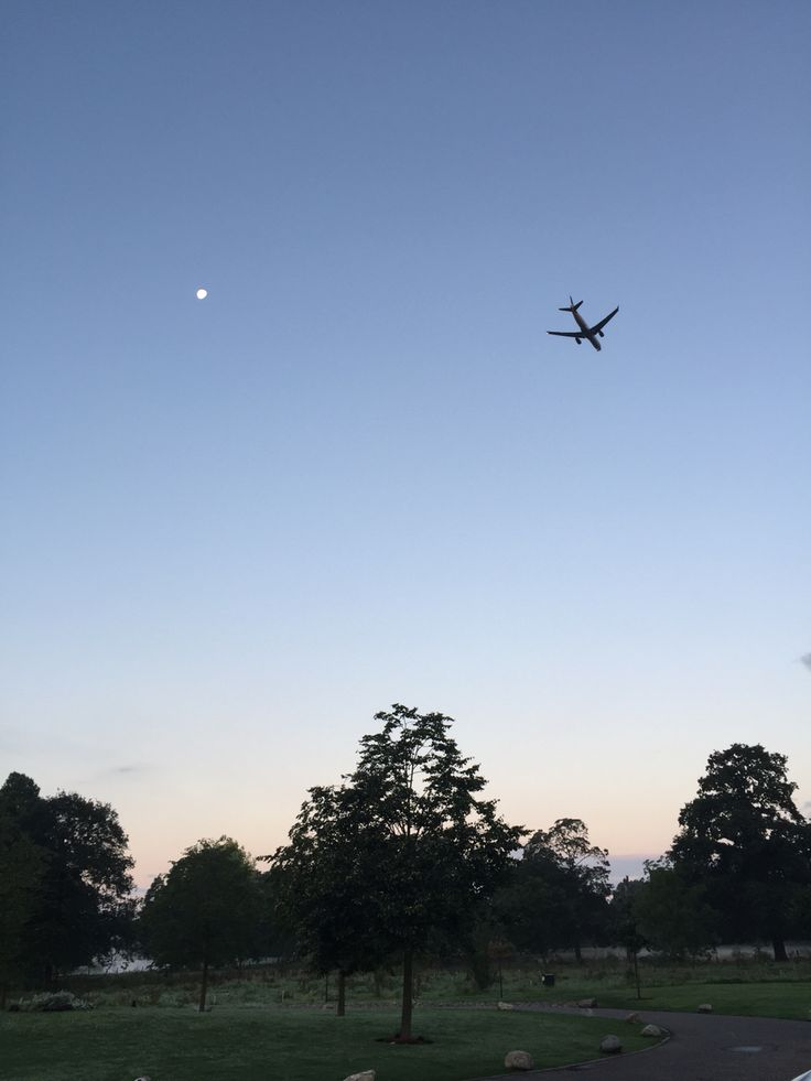 A plane flies over Syon park in London as the moon still shines on an early & crispy morning