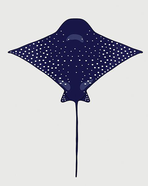 Purple Eagle Ray #eggpicnic #illustration #design #art #partofthesolution #conservation #education #shop #interior #kids #kidsroom #styling #nature #wild #wildlife #healthy #planet #sydney #australia #australiandesign