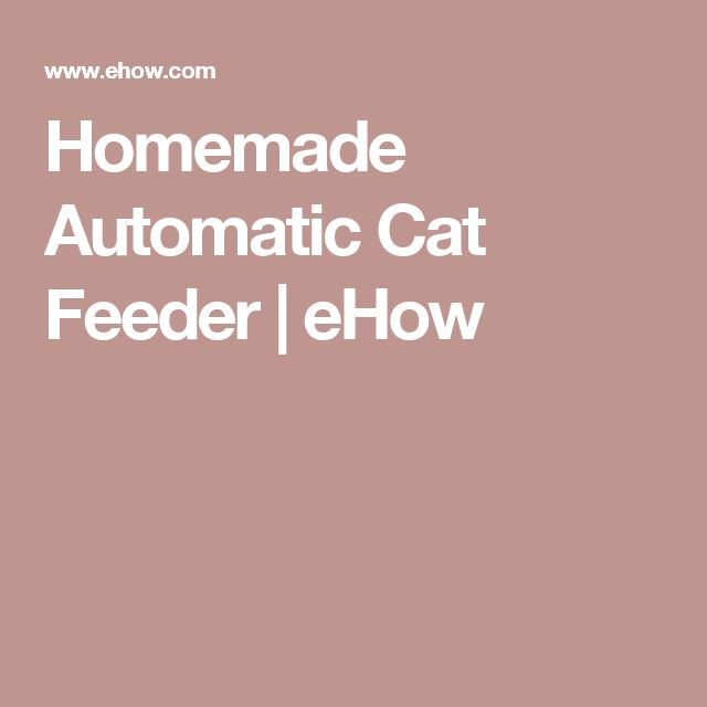 Homemade Automatic Cat Feeder | eHow