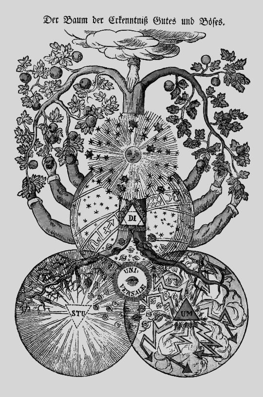 1000 images about alchemy on pinterest magic symbols for Tree of knowledge of good and evil tattoo