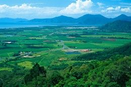 The upper section of the park is in the Atherton Tableland, overlooking Cairns, Queensland. Photo: Tourism Queensland.