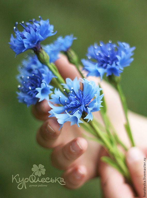 http://cs1.livemaster.ru/storage/53/7c/b8a2b0cf448bf955ae1cc50752--tsvety-floristika-vasilki-sinie-iz-polimernoj.jpg