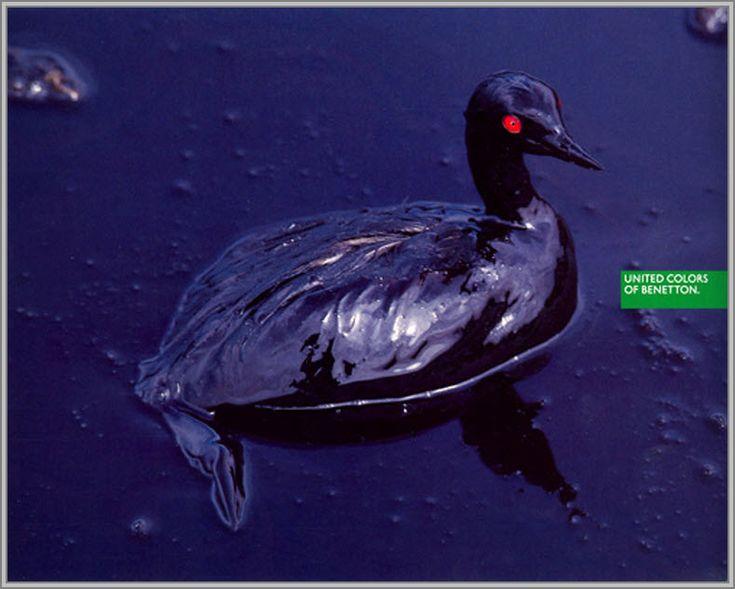 Marée noire - 1992 - Toscani