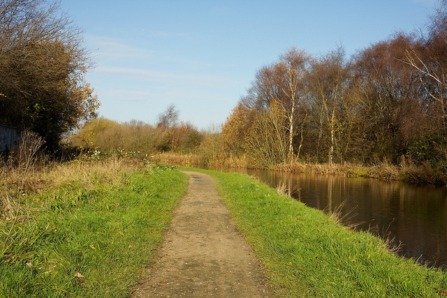 The canal at Walsall Wood
