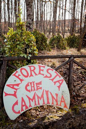The walking Forest_ Satriano di Lucania