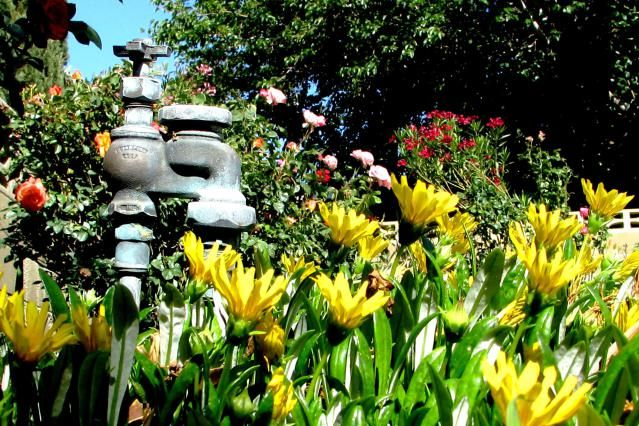 4 Tips for Finding a Sprinkler Valve