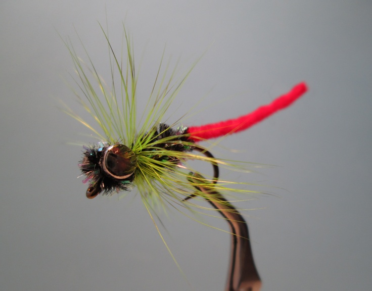 San Juan Worm Tail Carp Fly-Don Mear, but not my pattern.
