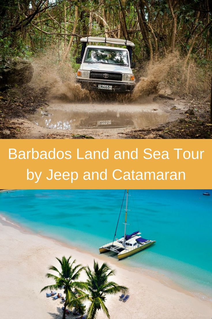 Experience beautiful Barbados by land and by sea on this incredible tour!