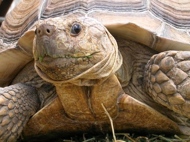 """""""I'm just really happy you joined the celebration"""" 
