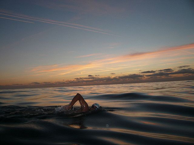 open water swim/  sun setting on the water/  serene, deep in thought   ~msnoberger #swim