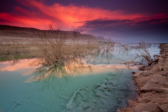 The Dead Sea. Credit: Amnon Eichelberg