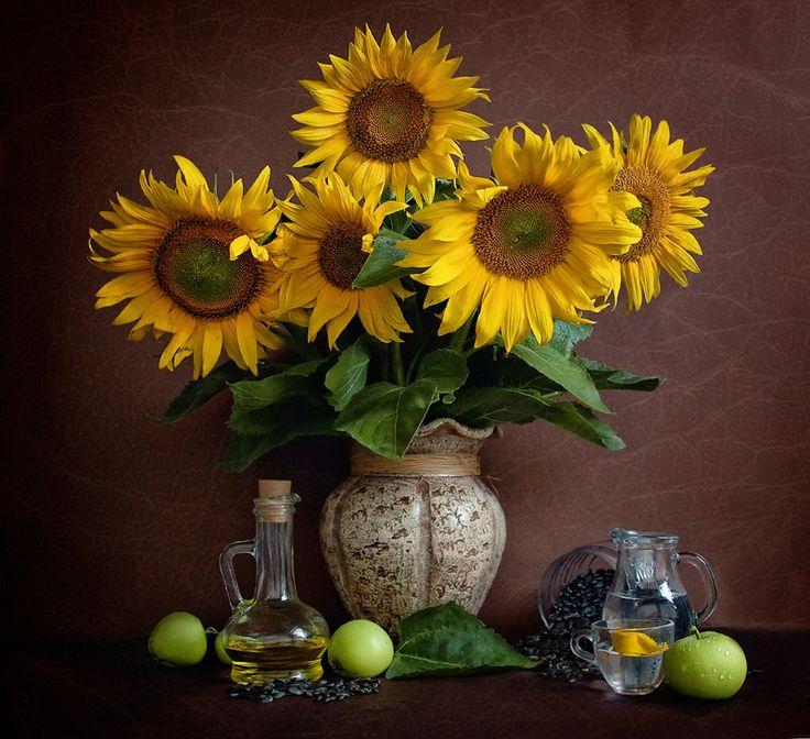 только фото картинки цветы подсолнухи в вазах оказывается, свежих бобов