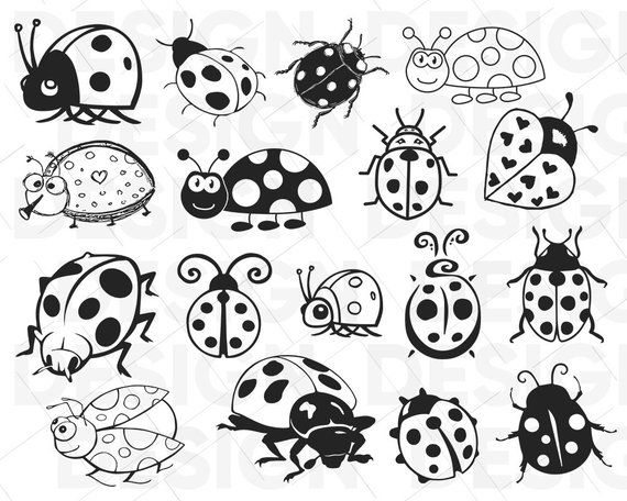 45+ Cute Ladybug Clipart Black And White