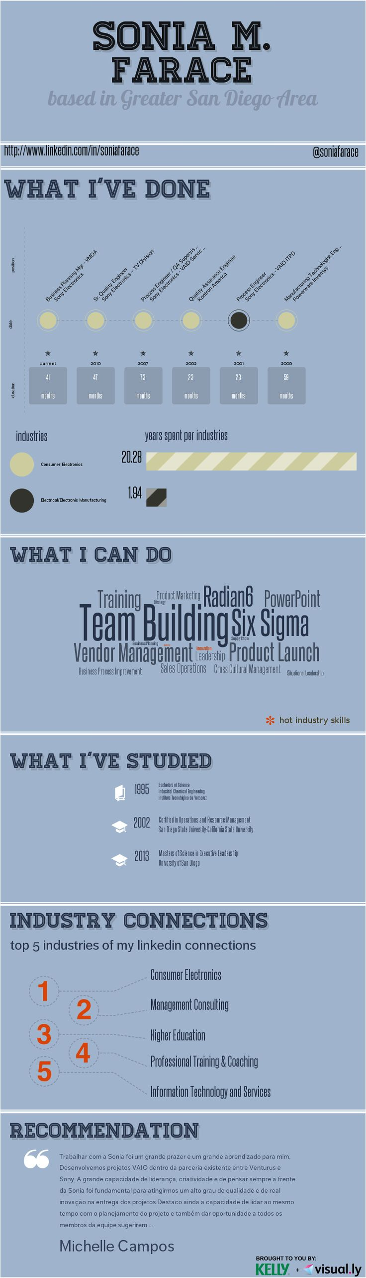 34 best Infographic Resume images on Pinterest | Info graphics ...