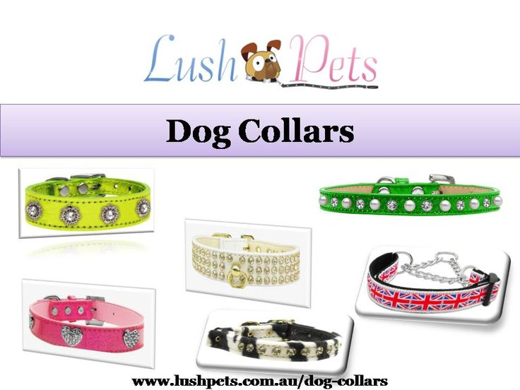 Buy Dog Collars Online in Australia - Lush Pets is a wholly owned Australian Pet Supplies Company with a dedication to providing Australians with the highest quality pet products available. Shop for a stylish dog collar or cat collar. Visit today at http://www.lushpets.com.au/dog-collars