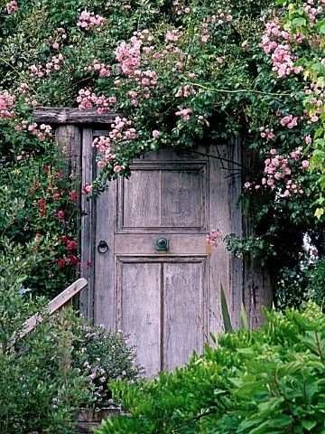 Door in yard. This is how I always pictured the door in the book The Secret Garden.