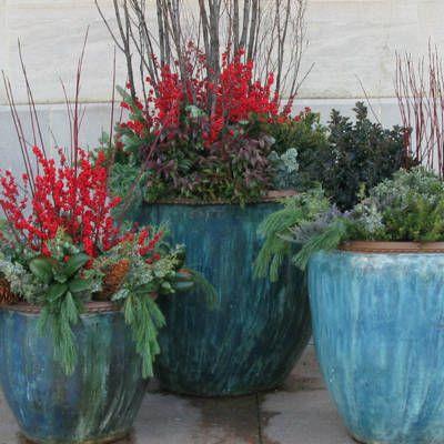 25 best ideas about winter container gardening on pinterest planters shade shade perennials - Terras arrangement ...