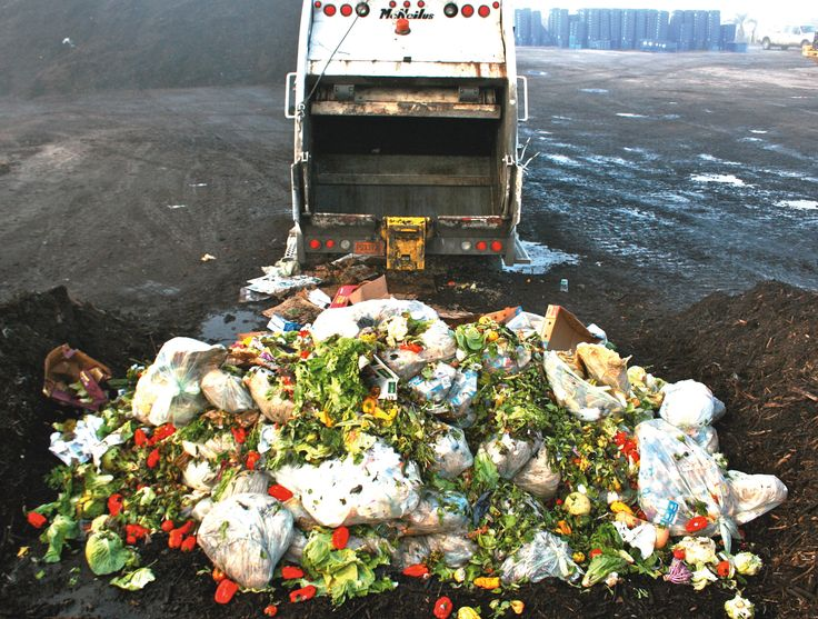 Top consumer brands pledge to halve food waste by 2025 http://www.reuters.com/article/2015/06/25/food-waste-idUSL8N0ZB1IL20150625 #Climate #Environment #Carbon #FossilFuels #Sustainable #SustainableLiving #GoGreen #RenewableEnergy #EcoFriendly #CarbonFootprint #Plastic #Reduce #Reuse #Recycle #WasteManagement #Sustainability
