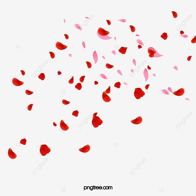 Esparcidos Petalos De Rosas Rojas Rosa Clipart Rojo Dispersado Png Y Psd Para Descargar Gratis Pngtree In 2021 Rose Petals Falling Rose Clipart Red Roses Background