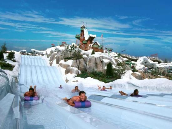 Blizzard Beach  Orlando, Florida didnt get time to do water parks last year, so its first on the list!