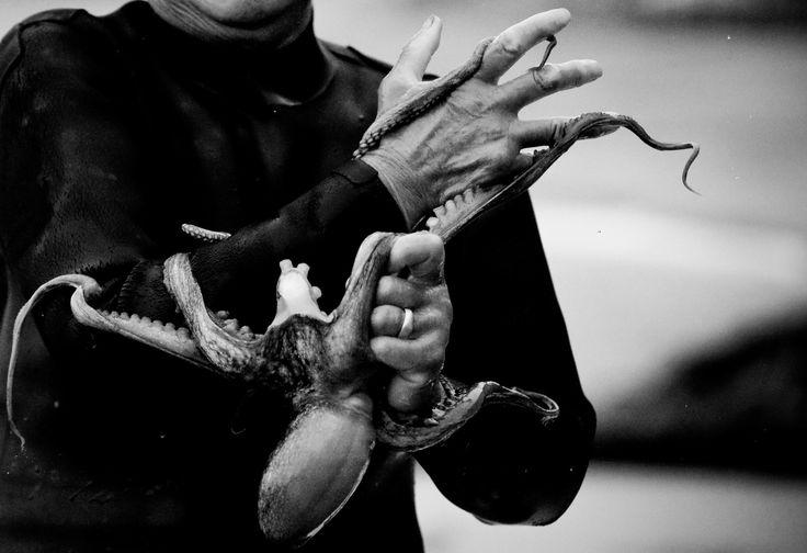 Haenyeo with Octopus