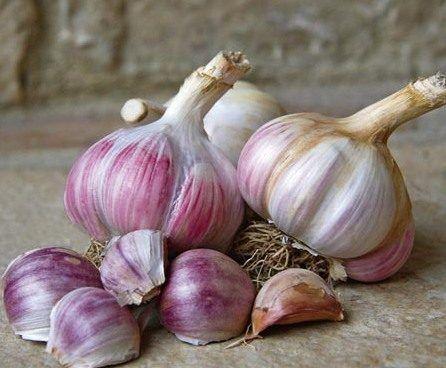 4 самых вкусных чесночных блюда
