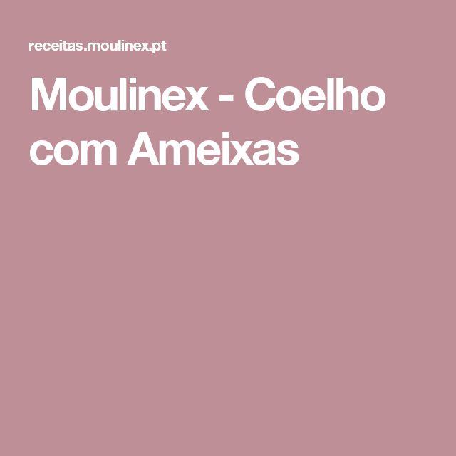 Moulinex - Coelho com Ameixas