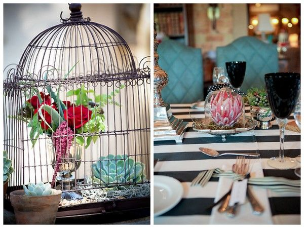 Google Image Result for http://capclassique.files.wordpress.com/2011/07/cj014-real-wedding-la-petite-dauphine-just-judy-protea-birdcage.jpg