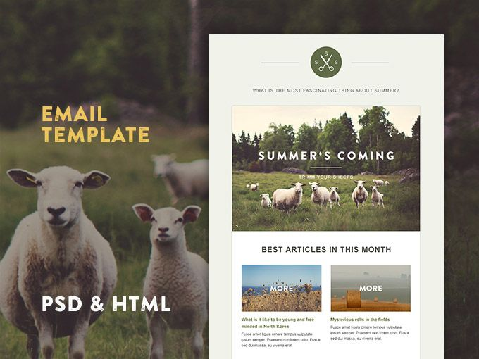Green Village : Clean and Minimal Email HTML-Template