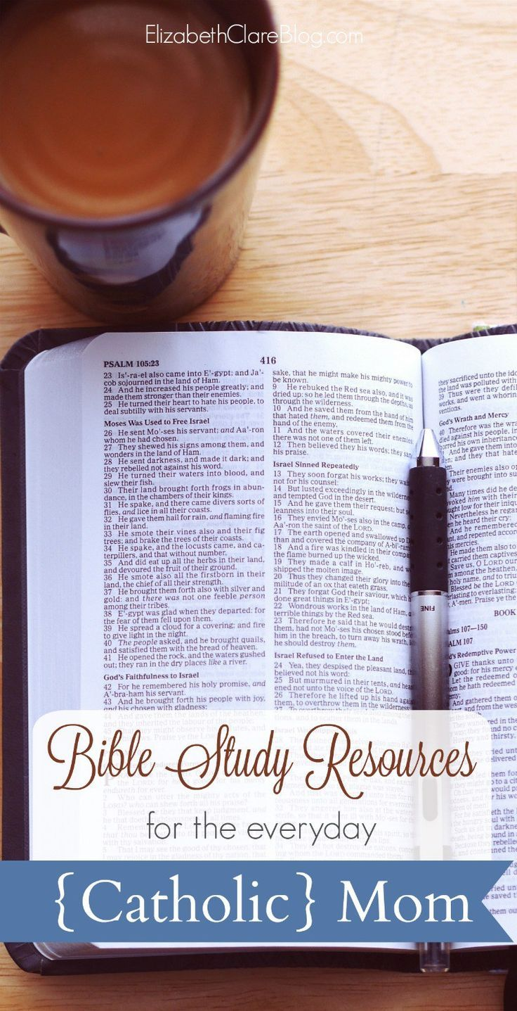 Bible Study Resources - The Great Adventure Catholic Bible ...