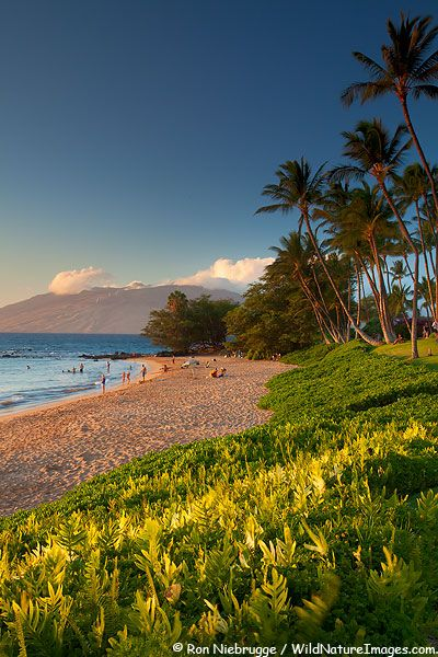 ✯ Ulua Beach - Wailea, Maui, Hawai  I love to walk down to this beach and enjoy the beautiful warm water.