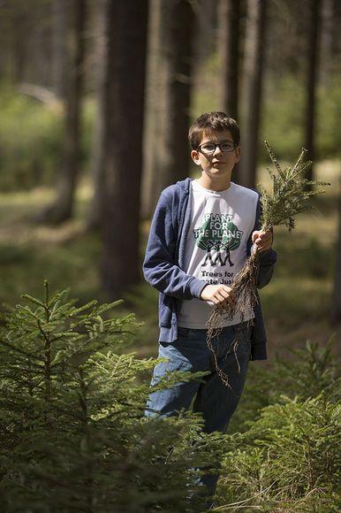 Как школьники посадили миллион деревьев