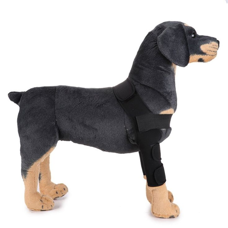 1 pair 2pcs dog leg brace pet protector dog surgical