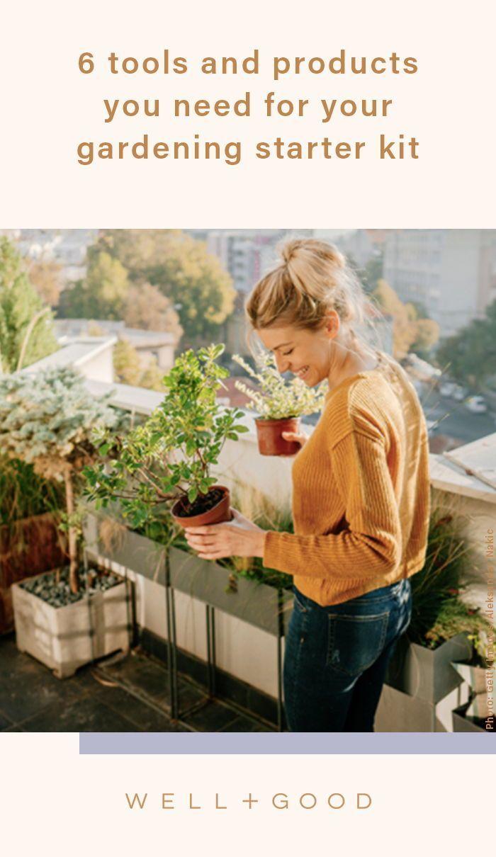 Nature S Blossom Herb Garden Seed Starter Kit Seed Starter Kit Seed Starter Garden Seeds