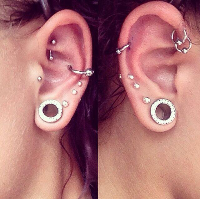 00 gauge, 3 lobe piercings, tragus, rook, conch, double forward helix, helix piercings