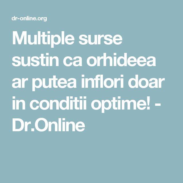 Multiple surse sustin ca orhideea ar putea inflori doar in conditii optime! - Dr.Online