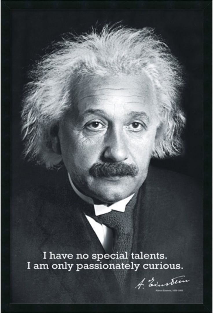 "I have no special talents. I am only passionately curious. - Albert Einstein - Gel Coated Finish - Outside Frame Dimensions: 37.41"" Height x 25.41"" Width x 1.13"" Depth - Image Dimensions: 35.75"" x 23."