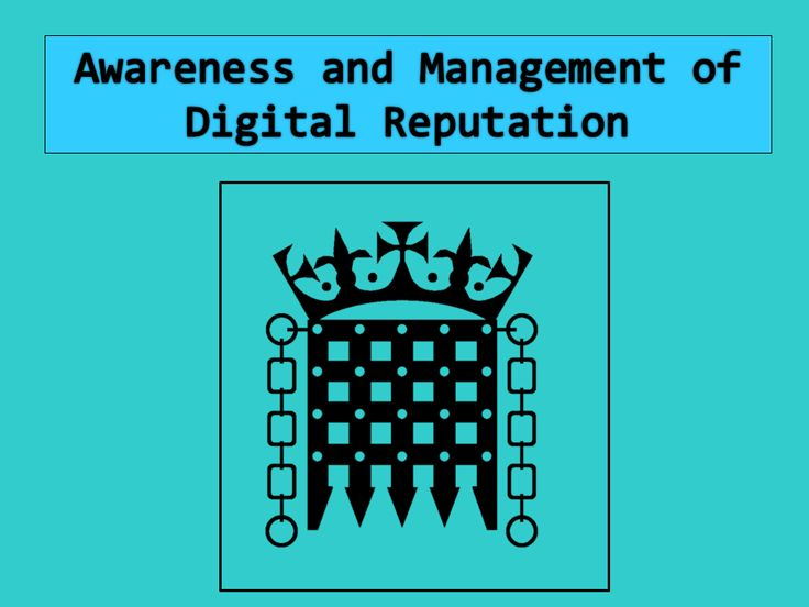 The Digital Chaperone: Digital Reputation: A Response to UK Government Proposals.