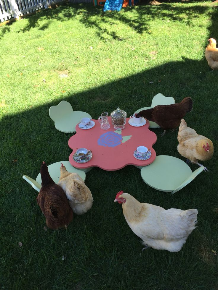 Tea time | Over the Top Chicken Love | Pinterest | Tea time and Teas